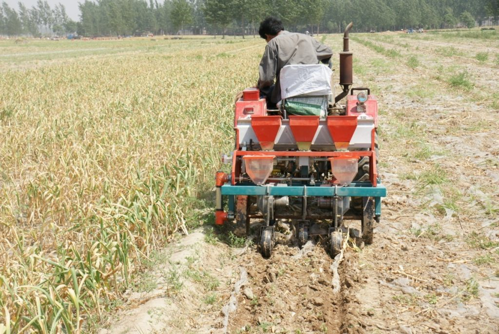 Machine to sow single seed of cotton after garlic